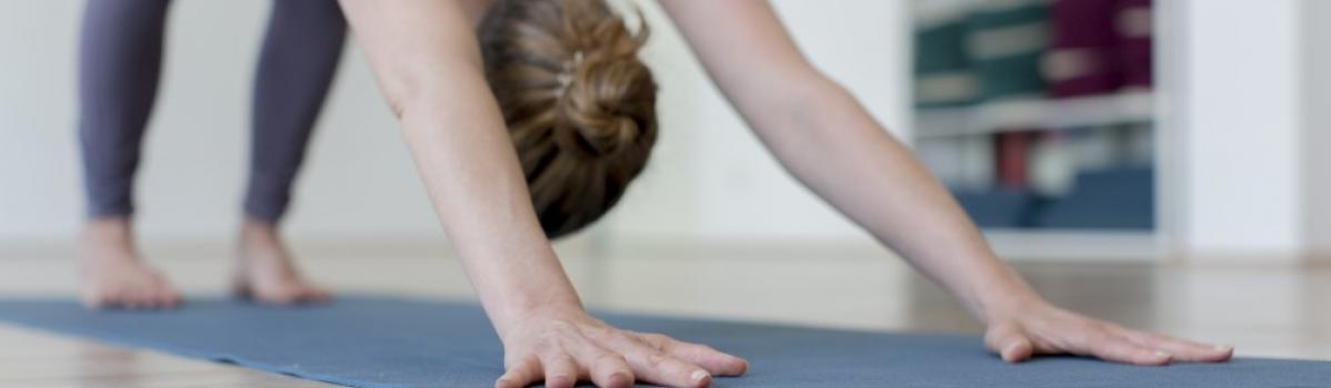 Start 4. Oktober|Yoga Intro| 6-Wochen-Kurs mit Inamarie in Flingern (ausgebucht)