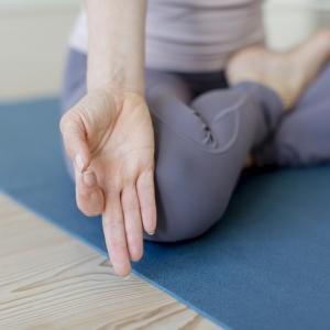 Start 6. November |Yoga Intro| 6-Wochen-Kurs mit Justine in Pempelfort