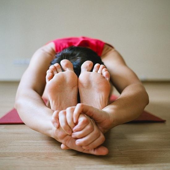 Start 5. Januar|Yoga Intro| 6-Wochen-Kurs mit Katharina in Flingern